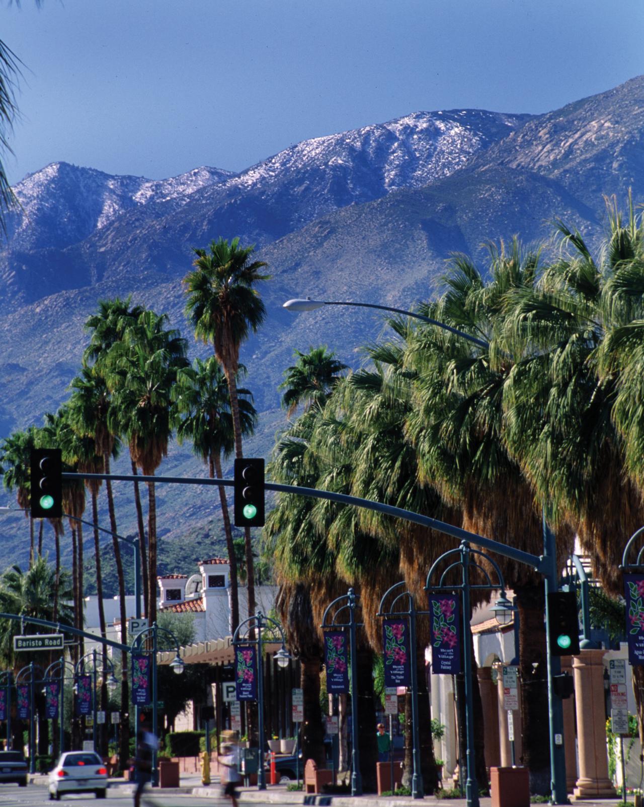 Palm-Canyon-Drive